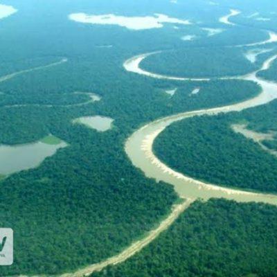 Vista aérea da região de Jutaí-AM. Foto de Andreia Fanzeres/OPAN.