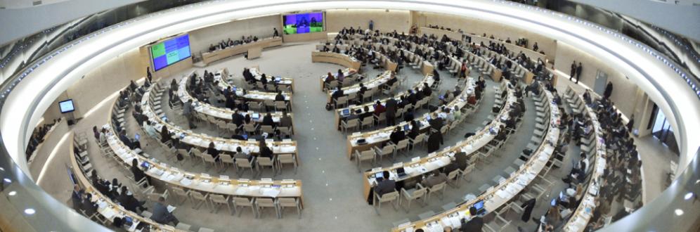 O CDH da ONU (Foto: Artigo 19)