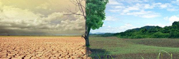 Degradação da natureza e agravamento da pobreza são frutos do sistema de produção, de consumo e de especulação que impera. Entrevista especial com Ivo Poletto