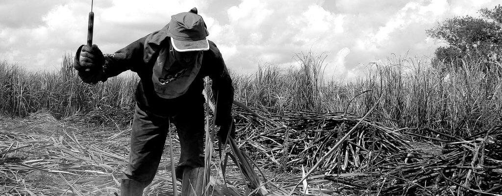 A atuação da sociedade civil frente às tentativas de retrocessos no combate ao trabalho escravo