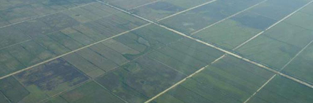 Impacto do agronegócio (Foto: Igor de Carvalho)