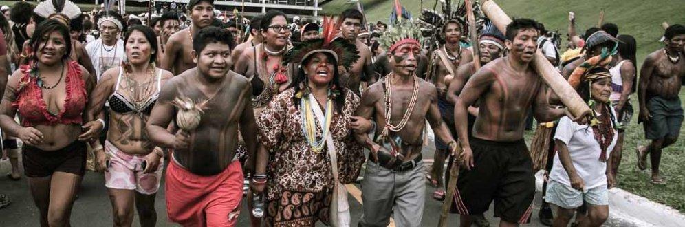 Brasil é país que mais mata defensores do meio ambiente: dos 207 mortos, 57 eram brasileiros Foto: Mídia Ninja