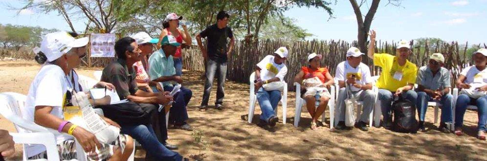 Quais os desafios da sociedade civil organizada no Brasil?