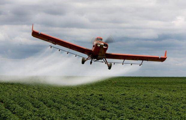 O mercado da comida gera doença desde a produção envenenada do agronegócio até a fabricação dos ultraprocessados/Divulgação