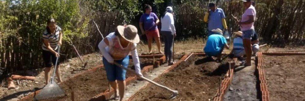 CEBs e Cáritas de Iguatu (CE) incentivam instalação de quintais produtivos Foto: Equipe de Comunicação de CEBs de Iguatu (CE)