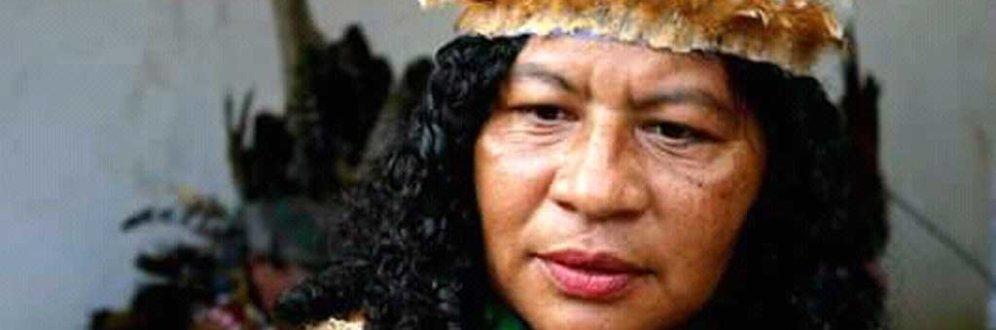 Atentado contra a cacique Madalena Pitaguary é consequência da falta de demarcação das terras indígenas Foto: arquivo pessoal