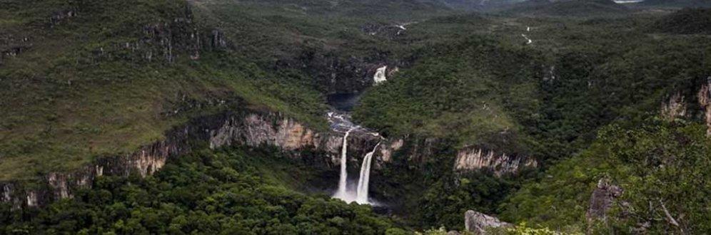 Haddad e Marina têm as melhores ideias para o meio ambiente, diz professor da USP Foto: MARCELO CAMARGO/AGÊNCIA BRASIL