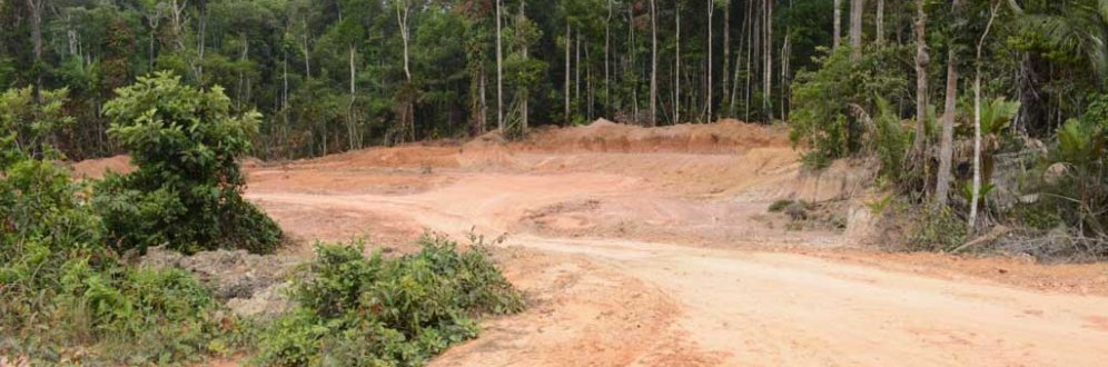 Projeto permite asfaltar estrada na Amazônia sem licença Foto: Vandré Fonseca