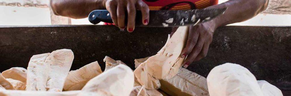 As mulheres que preservam a floresta e o legado de Chico Mendes Foto: Bruna Scorsatto