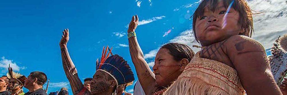 Suspensão de demarcações já provoca invasões em terras indígenas