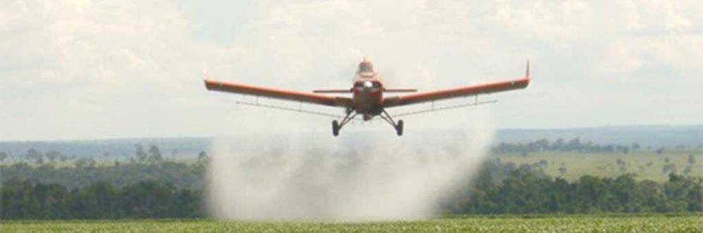 Governo libera registro de mais de um agrotóxico por dia neste ano Foto: Reprodução