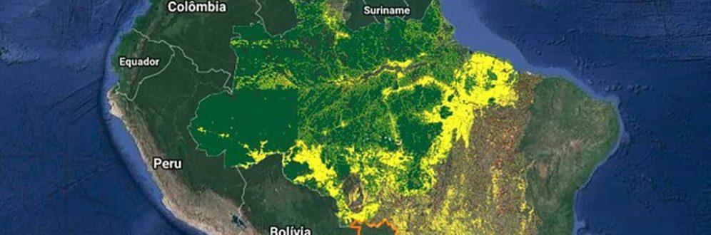 Desmatamento na Amazônia em junho equivale a 100 mil campos de futebol