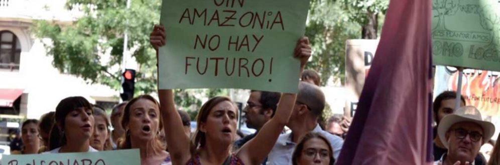 Confira onde ocorrem protestos pelo Brasil em defesa da Amazônia