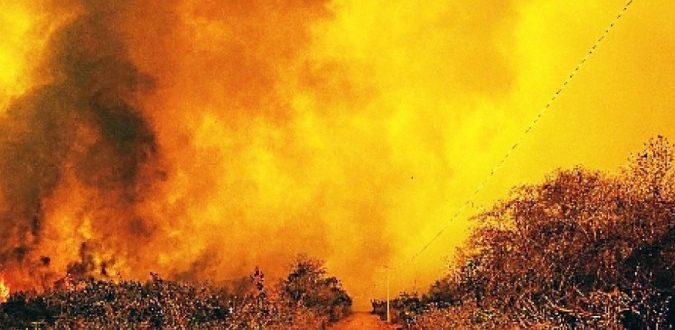 Queimadas se alastram pelo país, atingindo Pantanal, Amazônia e cerrado